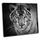 Tiger Canvas Animal Wall Art Print Framed Picture 25 Gallery Grade