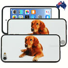 NEW Golden Retriever Hard Case for Apple iPod Touch 5 5th 6 6th Gen Cover