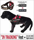 """IN TRAINING"" - DOG VEST  + Rights Card /Booklet  + (2) Service Dog Patches"