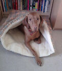 Pet Bed - Snuggle Bag Terrier Tunnel for Dogs who burrow. Warm & cosy. 2 Sizes
