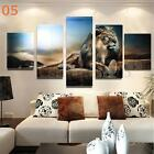 Large Canvas Huge Modern Home Wall Decor Art Oil Painting Picture Print Unframed <br/> Male Lion Leo,Sea Sunset,Jungle Tree,Abstract Tree etc