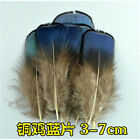 Wholesale 10-100PCS beautiful pheasant tail & peacock feathers 3-20cm/2-8inches