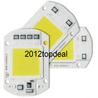 20W 30W 50W LED Floodlight COB Chip 110V 220V Input Integrated Smart IC Driver