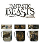 Fantastic Beasts Boxed Mug Where to Find Them Gift Newt MACUSA Official Cup