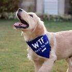 WTF: Where's the food dog bandana Navy Canvas Size S M L Adjustable Elastic band