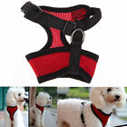 Nylon Pet Puppy Dog Harness Strap Vest Collar For Small Medium-sized Dreamed