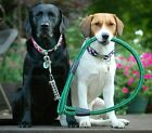 4' Super Heavy Duty Jumbo Dog Leash In 2 Colors With Spring Reduction Design