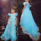 Flower Girl Kids Princess Cinderella Wedding Pageant Dress Party Prom Ball Gowns