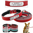 Soft Padded Leather Personalised Dog Collars and Leads for Dogs Chihuahua XS S M