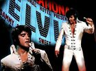Elvis Presley King Of Rock Graceland Poster Printed on Premium Gloss photo 123