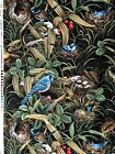 """""""Nesting"""" by Michael Miller, Birds, Nests, Eggs, Babies Quilting Fabric"""