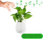 Bluetooth Blumentopf Lautsprecher Musik Player 4 Funktionen flower pot speaker