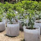 Fabric Grow Pots Breathable Bag Root Container Plant Pouch Vegetable Grow Bag