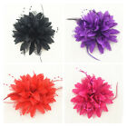 Party Hairband Corsage Flower 5 Colors Hair ornaments Pearl Feather 1Pcs Bride