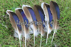 Hot Selling 20-200pcs Beautiful 4-5 inches/10-13 cm natural duck feather crafts