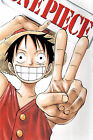 Poster Silk One Piece Luffy Japan Anime Boy Room Club Wall Cloth Print 8