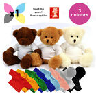 1 x BLANK JAMES TEDDY BEAR SOFT TOY WITH SUBLIMATION PRINTABLE SHIRT HOODY