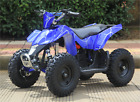 Sahara 350W 24V 12in Electric Ride on Mini Quad  ATV for Kids 12Ah Battery Power