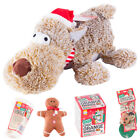 Pets Christmas Treats Cats & Dogs Christmas Stockings & Gifts