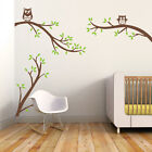 White Birch Tree Owls Wall Decal Baby Kids Playroom Removabl