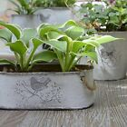 Metal Plant Container Mini White Flower Pot Rope Handles Vintage Home Decoration