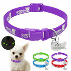 Personalized Cat Dog Collars & Dog Tags Engraved Noctilucent Kitten Collar XS S