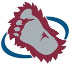 Colorado Avalanche NHL Decal Sticker Car Truck Window Bumper Laptop Wall $10.99 USD on eBay
