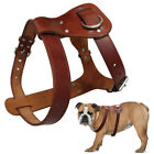 Top Genuine Thick Leather Big Dog Harness Heavy Duty for Small Medium Large Dogs