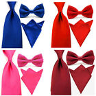 USA Mens Solid Color Satin Wide Necktie Bowtie Pocket Square Set Ties Hanky Lot