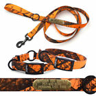 Hunting Dog Collar Blaze Orange Mossy Oak Camo Nylon with Tag and Matching Leash