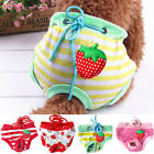 EP_ Female Pet Dog Puppy Diaper Pants Physiological Sanitary Panty Underwear Pre