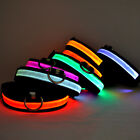 Dog Cat Collar Pet Supplies Small Dogs Collars Night Safety LED Glow Twinkle LED