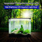 Blue and White LED Submersible Air Bubble Light Underwater Aquarium Fish Tank