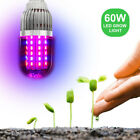 43W 60W 360° E27 LED Grow Light Bulb Lamp Garden Plant Veg Flower AC85-265V US