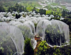 Mosquito Garden Crop Plant Netting Protect Bug Insect Barrier Bird Net image