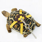 Kyпить Pet Tortoise Turtle Leather Harness Strap Chest Collar Walking Lead Control Rope на еВаy.соm