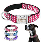 Dog Collar Nylon Engraved Customized Puppy ID Tag Collar AntiLost Dog Collars