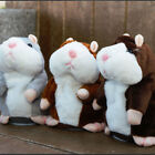 Cute Talking Hamster Plush Toy With Talk Back Voice