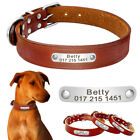 Personalised Dog Collar Durable Cute Puppy Custom Leather Engraved ID Tag Collar