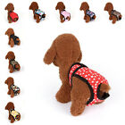 Pet Physiologic Pants Safety Anti-harassment Belly Band Underwear For Female Dog
