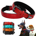 Real Leather Dog Collar Adjustable for Small Medium Large Dogs Pitbull Bulldog