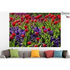 Red Flowers Poster Canvas Print Tulips Wall Art Pin Up Room Decor Home Decor