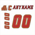 Calgary Flames 2000-2017 White Jersey Customized Number Kit un-stitched $34.99 USD on eBay