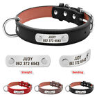 Personalised Dog Collar Custom Personalized Collars Leather Collar for Labrador