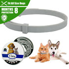 Didog Natural Dog Cat Flea and Tick Collar 8 Month Protection Insect Killer S M