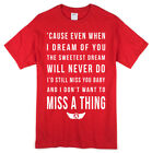 Aerosmith Rock Music Lyrics T-shirt - Miss a Thing Song Tee in Mens or Ladies