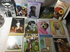 Leanin Tree Dog Lovers Greeting cards For Kids and Adults buying 1