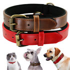Real Leather Dog Collar Red Brown Cozy Padded Collar for Small To XLarge Dogs