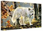 Wolf In The Autumn Trees Canvas Wall Art Picture Print