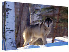 Grey Wolf In The Snow Forest  Landscape Canvas Wall Art Picture Print